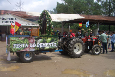 A float at the fiesta